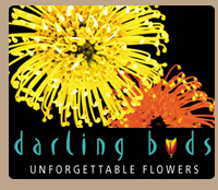 Darling Buds Florist